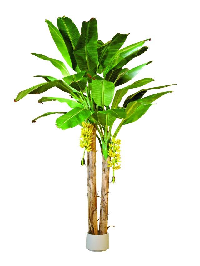 umelé palmy