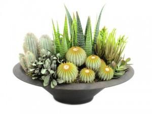 umelé kaktusy